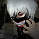 Cosplay Anime Tokyo Ghoul Kaneki Ken Silver White Short Hair Wig With Cap Party