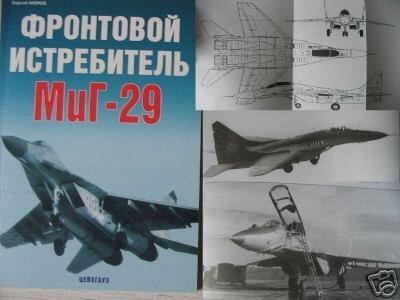 Russian Combat Jet Fighter MiG-29 (Aircraft)