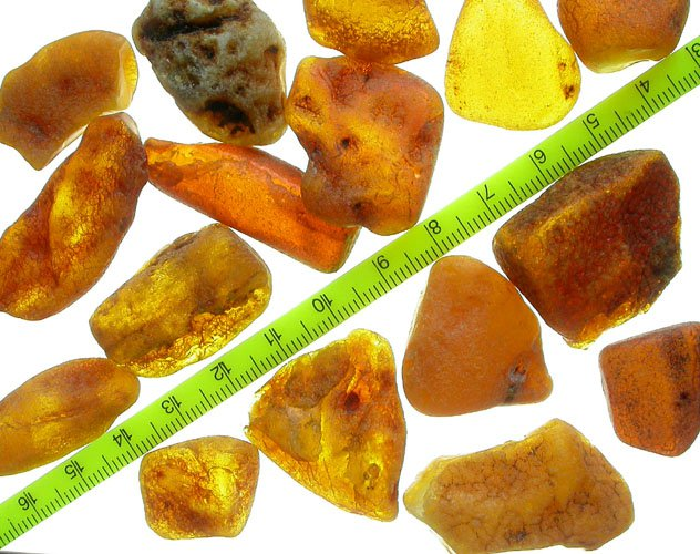 Unsearched rough Baltic fossil amber 20 - 30mm (90 gr.)