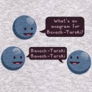 Math Hoodie - Size XL - Ash - Banach-Tarski Sweatshirt