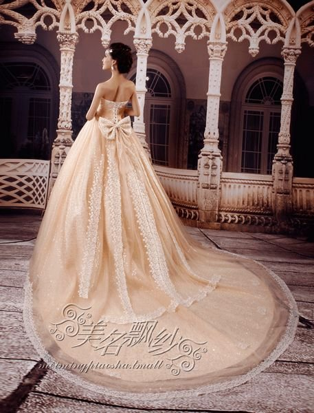 custom made WEDDING Dress bridal dress lace beaded +TRAIN champagne