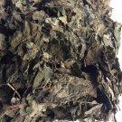 Dream Herb - Calea zacatechichi Leaf 16 Oz / 1 Lb Bag WHOLE LEAF