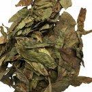 Chacruna Leaf  (16 Oz/1 Lb Bag)