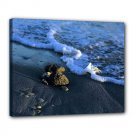 16x20 Gallery Wrap Sea Shore