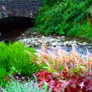 Glencar, Ireland Bridge 8x10 Print
