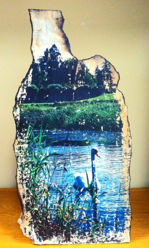 Markree Castle Swan Wood Art