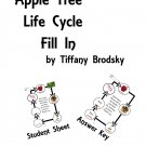Apple Tree Life Cycle Fill In Science Vocabulary Check or Practice PDF