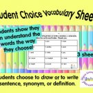 Vocabulary Practice Sheets