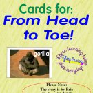 Picture-Word Cards for From Head to Toe by Eric Carle 12 Animal Photos and 10 Actions with Words PDF
