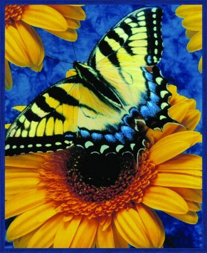 Butterfly on sunflower, mink style soft and warm queen size blanket, Q973