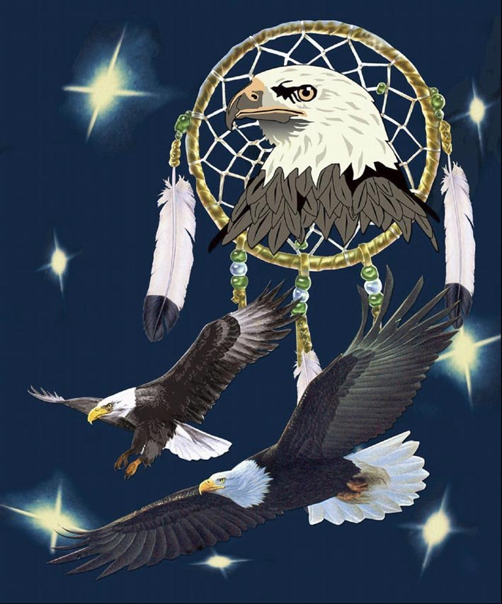 Eagle with dream catcher, mink style soft and warm queen size blanket, Q929E