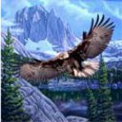 Flying Eagle With Mountain Scene, mink style soft and warm queen size blanket,  Q930E