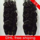 Virgin Brazilian Human Remy Hair Weft Curly 14Inch 12OZ 3pks off Black