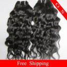 Brazilian Human Hair Extensions Virgin Remy Hair Weft water Wave 12Inch 2packs 8oz Black and Brown