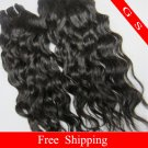 "Brazilian Human Hair Weaving Virgin Remy Hair Extensions water Wave 20"" 2packs 8oz Black and Brown"