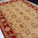 High Quality Hand Made Vegetable Dyed Peshawar Oriental Chobi Rug Carpet 9x6 i70712