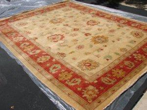 Hand Made Vegetable Dyed Peshawar Oriental Chobi Rug 11x8 i70730