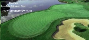 Turfgrass, Greens Beneficial Microbial Blend Fertilizer