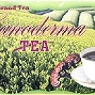 Ganoderma Green Tea (box of 20)