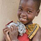 World Vision Gift of 1 Rabbit