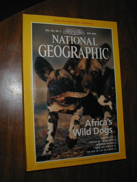 National Geographic Vol. 195 No. 5 May 1999 Africa's Wild Dogs, ants and plants (G3)