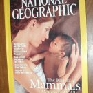 National Geographic Vol. 203 No. 4 April 2003 The Rise of Mammals the Mother of us All (G3/4)