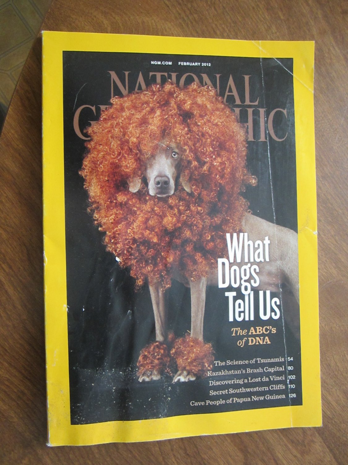 National Geographic Vol. 221 No. 2 February 2012 What Dogs Tell Us, The ABC's of DNA (G3)