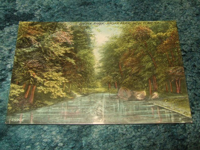 Bronx River, Bronx Park, New York 1910's Postcard 25902