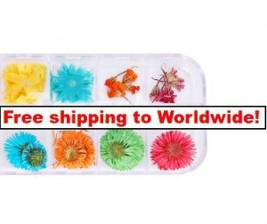 12 Styles Real Dried Flower Nail Art Decoration tm10002590 + Free shipping to worldwide!