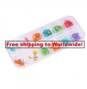 12 Styles  Real Dried Flower Nail Art Decoration tm10002602   + Free shipping to worldwide!