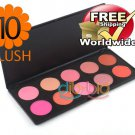1 x 10 Color Blusher Palette BC + Free shipping to worldwide!