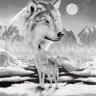 Wolf, Q979