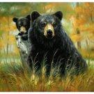 Black Bears, Q980