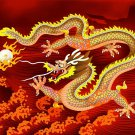 Asian Dragon, Q936
