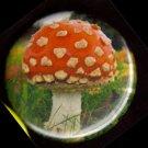 "Amanita Muscaria Mushroom pinback button badge 1.25"""
