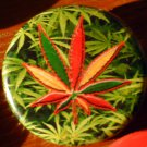1 RASTA LEAF W/ GANJA GARDEN BACKGROUND pinback button badge 1.25""
