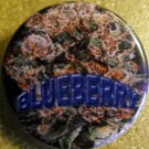 MARIJUANA BLUEBERRY pinback button badge 1.25""