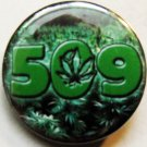 509 MARIJUANA FIELD pinback button badge 1.25""