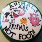 ANIMALS ARE FRIENDS NOT FOOD! pinback button badge 1.25""
