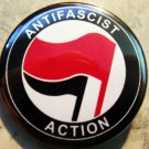 ANTI-FASCIST ACTION pinback button badge 1.25""