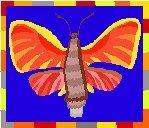 Butterfly #3 Return Address Labels