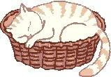 Sleeping Cat Return Address Labels