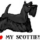 I Love My Scottie! Return Address Labels