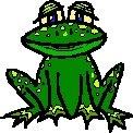 Frog Return Address Labels