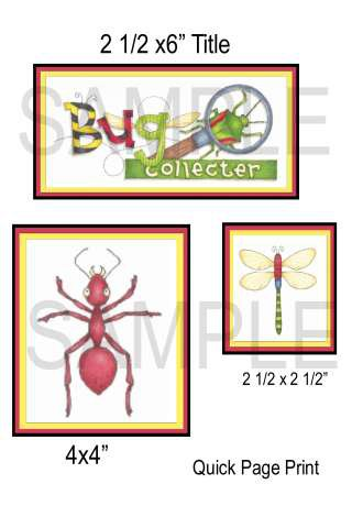 Bug Collecter-QP-Emailed as JPEG File-Commercial and Personal Use