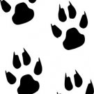 Paw Prints Vinyl Decal