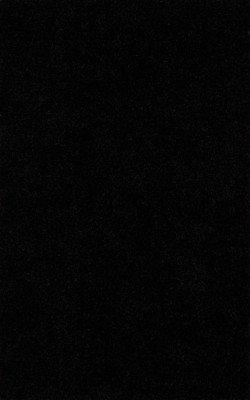 SHAG 4x6 AREA RUG SOLID BLACK HANDMADE TUFTED SOFT NEW