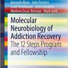 Molecular Neurobiology of Addiction Recovery: The 12 Steps Program and Fellowship [eBook]