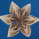 B623 Cut shells- Strombus turturella-07,   1 oz.