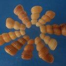 B619 Cut Shells Turritella terebra-07, 1 oz